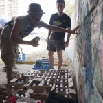 UrbanCreattures.bg_0002