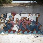 UrbanCreattures.bg_0184